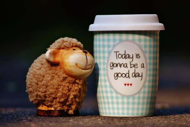 Happy Animal Good Day Coffee